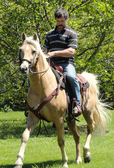 Paul Nation - Missouri Foxtrotter Breeder